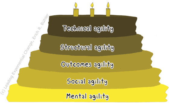 The five types of Agility in Enterprise Agility
